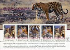 Netherlands 2018 MNH Bengal Tiger Endangered Animals 5v M/S Tigers Stamps