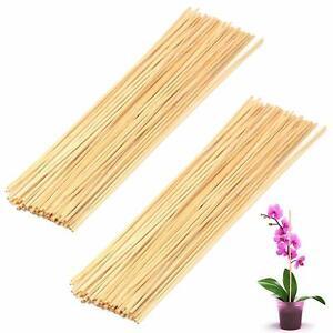 50 Wooden Bamboo Plant Sticks Garden Canes Plants Support Flower Stick Cane 40CM