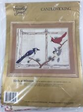 BIRDS AT WINDOW Cardinal Blue Bird Winter Embroidery Candlewicking Kit NEW