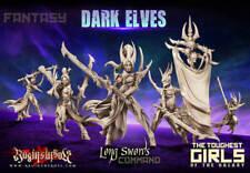 Raging Heroes Long Swords Command Group - Dark Elves - New