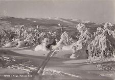 Vinter parti ved GÅLÅ Norge Bilde Brevkort Normanns Norway Real Photo Postcard