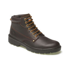 Mens Dickies Antrim Safety Work BOOTS Brown Size UK 9 EU 43 Fa23333