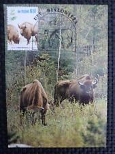 POLEN MK ANIMALS BISON WISENT MAXIMUMKARTE CARTE MAXIMUM CARD MC CM a9337