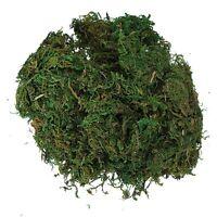 Green Artificial Reindeer Moss For Lining Plant Flower Garland Decor DT