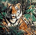 ESQUEMA PARA PUNTO DE CRUZ GRAFICO TIGRE ANIMALES TIGER CROSS STITCH PATTERN