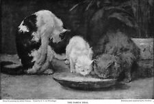 Arthur Tomson Artist on the Cat in Art Kittens 1910 Original Magazine Article