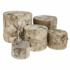 Birch Wood Tree Stump Display Risers - Set of 5, 43676
