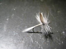 New listing 6 Size 12 Blue Quill Premium Ligas Fly Fishing Flies