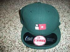 DC SHOES New NWT Mens Snapback Adjustable New Era Green Flag HAT CAP