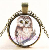 Vintage Cute Owl Photo Cabochon Glass Bronze Chain Pendant Necklace