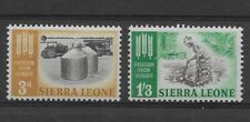 L5231 Sierra Leone FREEDOM FROM HUNGER 1963