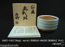 o3691-o3695, White HAGI ware, DEISHI, Special order MINI-BONSAI-POTs.