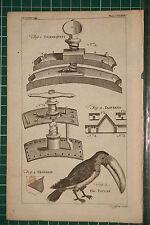 1764 antico stampa ~ tourniquets tournequets ~ Toucan POLIGONALI POLIGONALE ~