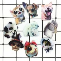 1PCS New Animal Cute Squirrel Dog Cat Acrylic Brooch Badges Icon Brooches Pins