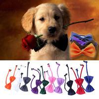 10x Pet Puppy Kitten Dog Cat Adjustable Neck Collar Necktie Groom Suit Bow Tie