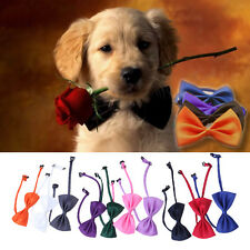 10x Pet Puppy Kitten Dog Cat Adjustable Neck Collar Necktie Groom Suit Bow Tie