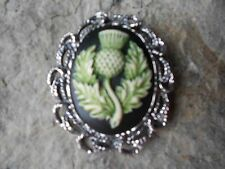 -2 In 1- Hand Painted Scottish Thistle Cameo Brooch / Pin / Pendant