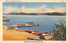 Farmington Missouri Row Boats Waterfront Antique Postcard K61780