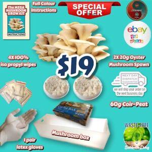Grow Ur Own Oyster Mushroom MEGA Kit - 2XMycelium / Box / Gloves / Isopropyl