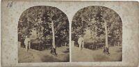 Scena Artistica Nel Il Legno Fotografia Stereo Vintage Albumina c1860