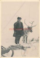 Foto, major L. Aubeck, GEBIRGSJÄGER Pi. BTL. 181, Letonia, Rusia, 006 (a) 1036