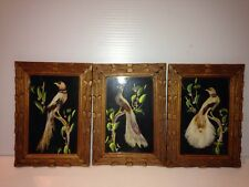 VTG Set of 3 Feather Bird Folk Art Pictures Mexican Carved Wood Frames 7 X 5 +