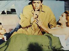 "DEBORAH KERR & GREGORY PECK in ""Beloved Infidel"" - Orig, 35mm COLOR Slide"