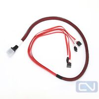 Amphenol 75cm SAS SFF-8087 to 4X SATA 7Pin HD Splitter Breakout Cable RMS36-1800