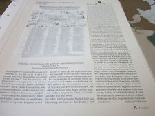 Prusia archivado 1 alta maestro príncipes electores 1120 ben chluchim Leupold 1550