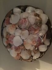 Wicker Basket With Sea Shells -New in Original Shrink Wrap Packaging- New
