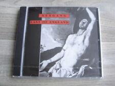 CD post punk goth DEREK JARMAN rock alt ANDI SEX GANG CHILDREN Last Of England