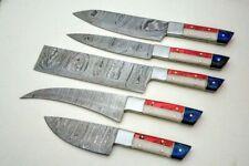 Professional chef knife set/ 5pcs chef Knife Damascus BLADE set