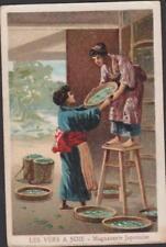 CHROMO PUBLICITAIRE CHICOREE WILLIOT- LES VERS A SOIE-MAGNANERIE JAPONAISE