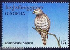 Georgia 1996 MNH, Birds of Prey, Raptors, Short-toed Snake Eagle  -V174