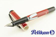 PELIKAN CULTURE PEN P22 Fashion Steel M nib 2003 Youngster´s fountain pens