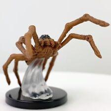 Giant Wolf Spider - Fangs & Talons #8 D&D Miniature