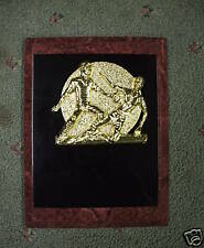 6 x 8 ruby & black enameled baseball plaque trophy