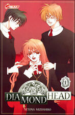 DIAMOND HEAD tome 1 Mizushiro MANGA shojo en français