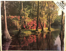 Vintage Whitman Western Publishing 1000 Piece Puzzle 4777 Greenfield Gardens