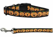 Mirage Pumpkins Halloween Nylon Dog Collars and Leash Combo