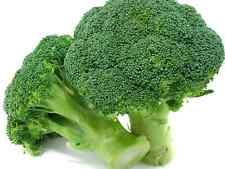 "Broccoli Seeds ""DI CICCO"" (Approx 200 Seeds) Popular Garden Vegetable"