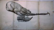 L'ART des ACCOUCHEMENTS, Jean-Louis BAUDELOCQUE, MEQUIGNON, TOMES 1 + 2, EO 1781