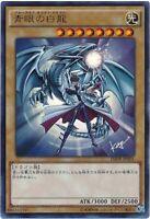"Japanese Yugioh ""Blue-Eyes White Dragon"" JMPR-JP001 Kaiba Corporation Rare"