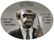 CZ75B  2nd Amendment Right to Bear Arms Assult Rifle Semi Auto Pistol Reloading