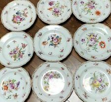 Set of 9 Vintage Meissen Germany Floral Hand Painted Dinner Plates