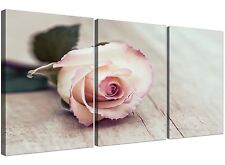 Vintage Shabby Chic French Rose - Cream Floral Canvas Multi 3 Set - 3278