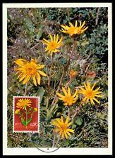 YU MK 1967 Flora Arnica maximum carta carte MAXIMUM CARD MC cm h0653