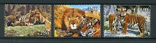 Tajikistan 2016 MNH Wild Cats Big Cats Tigers Lions 3v Set Wild Animals Stamps