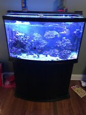 46 bowfront saltwater fish tank with coral and all Fish, canister filter w stand