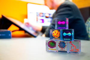 XLarge 3D Printed Full Set Colour Models of Contagions Virus Bacteriums Cubes